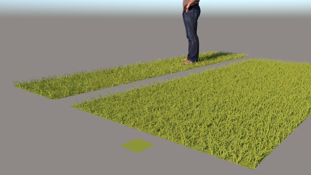 רינדור VRAY FUR GRASS 6