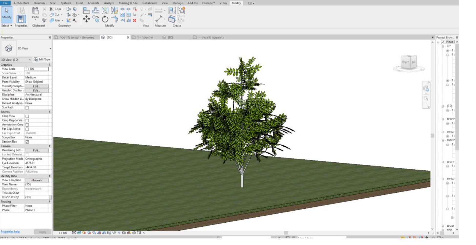 עצים 1